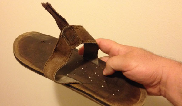 Broken Flip-Flop Convinces Shell of a Man to Concede His Youth and Purchase Ridiculous Sandals