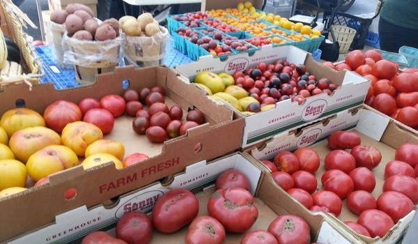 EVERY TUESDAY: Hoboken Downtown Farmers' Market is Open — Now Through November