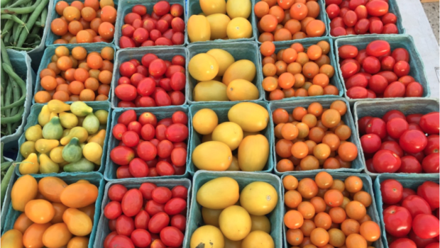 IN THE GARDEN OF EATING: Hoboken Farmers Market Moves to 5th & Garden Sts—EVERY TUESDAY